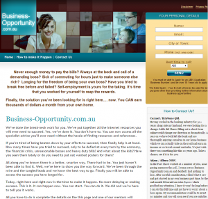 Business-Opportunity